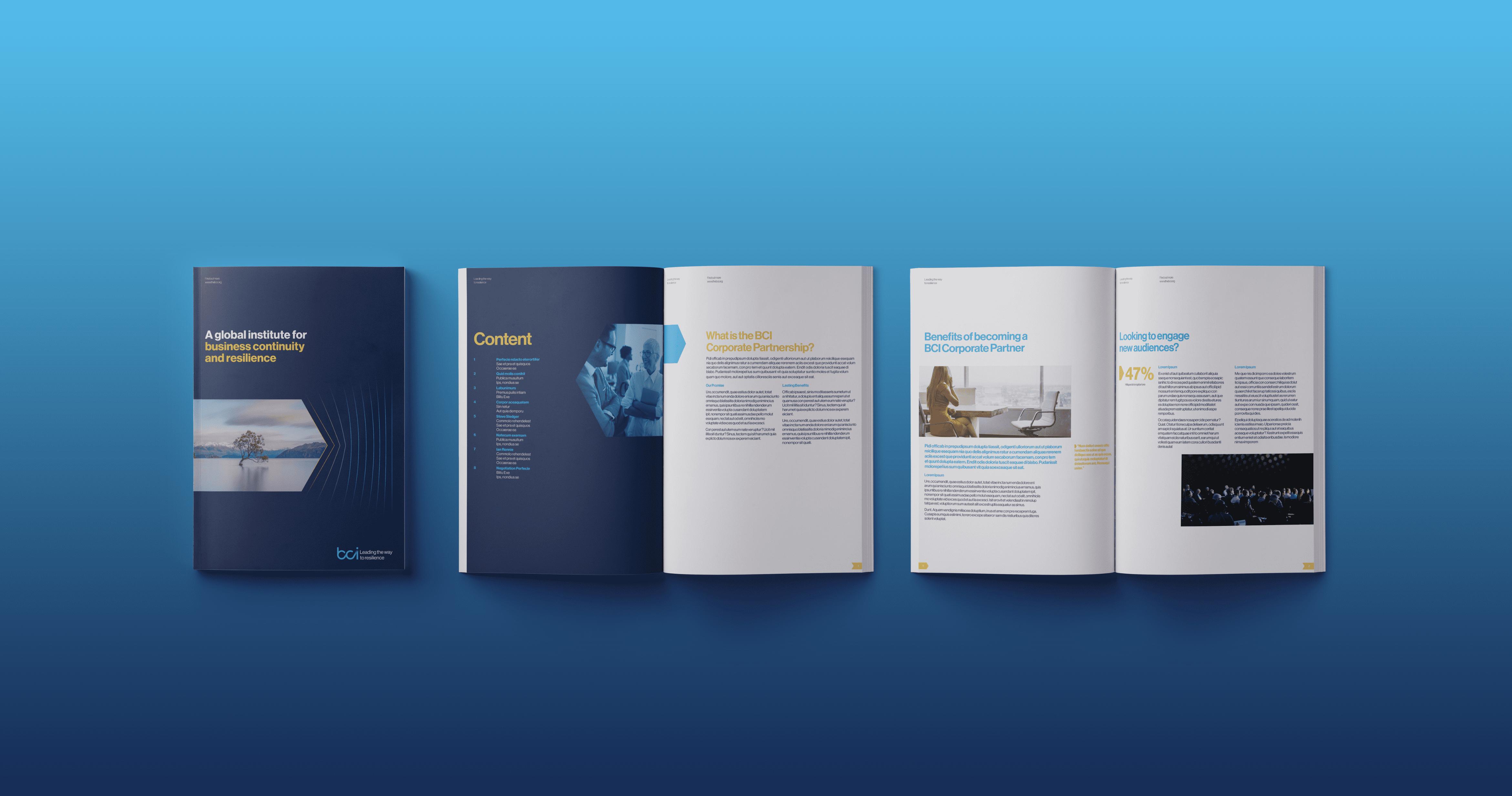 BCI_Brochure